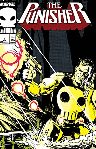 The Punisher (1987-1995) No.2