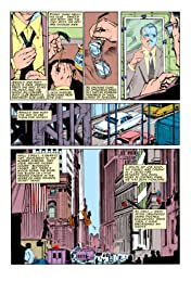 The Punisher (1987-1995) #8