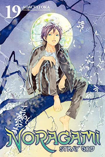 Noragami: Stray God Vol. 19