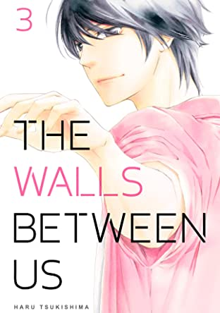 The Walls Between Us Vol. 3
