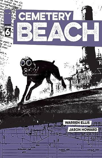 Cemetery Beach No.6