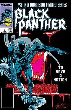 Black Panther (1988) #3 (of 4)