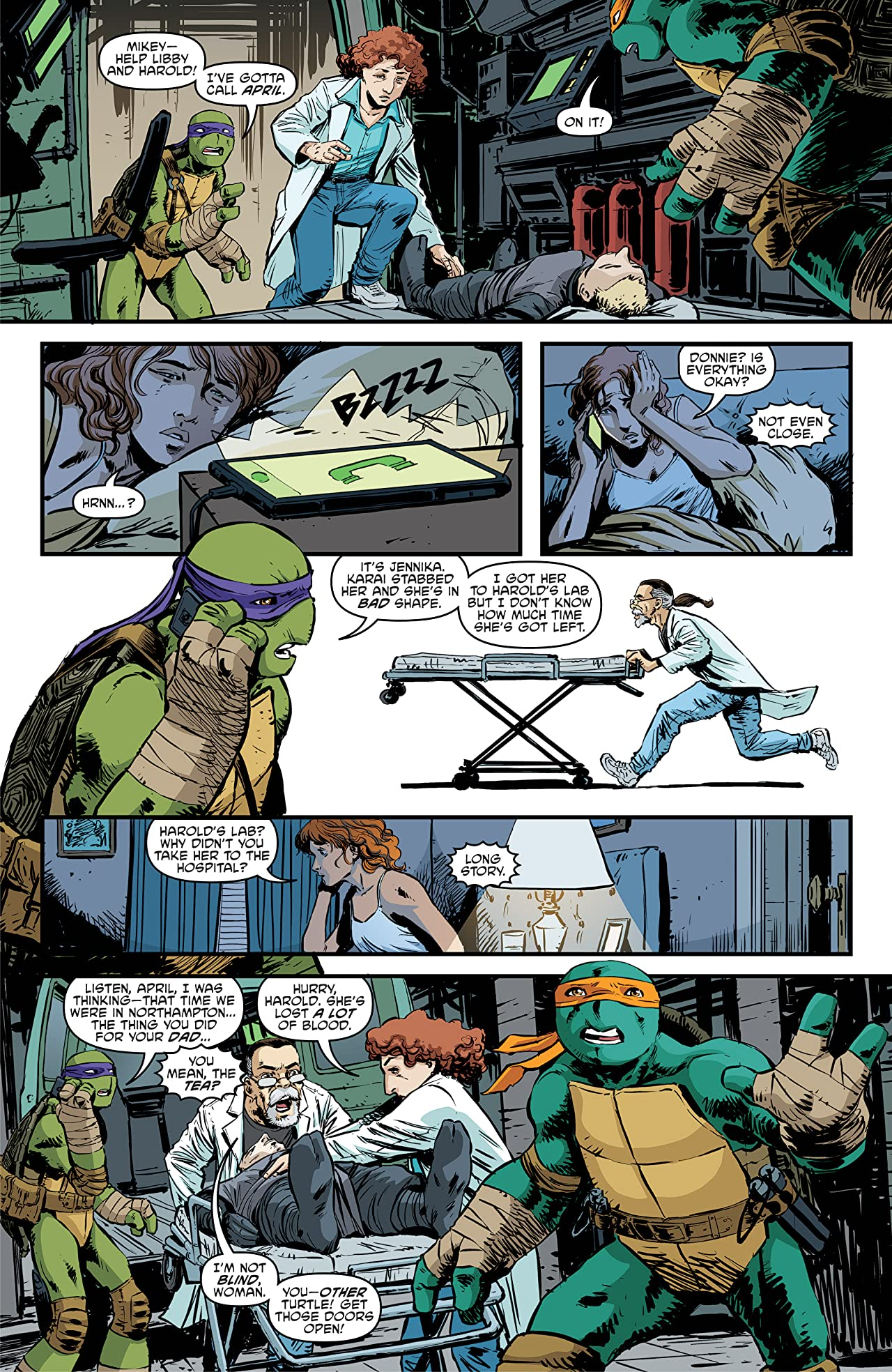 Teenage Mutant Ninja Turtles #94