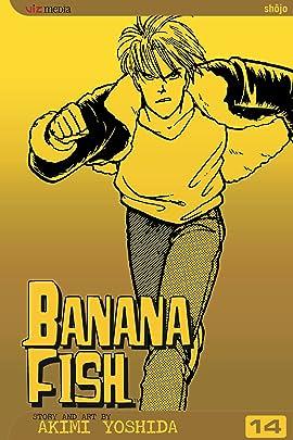 Banana Fish Vol. 14