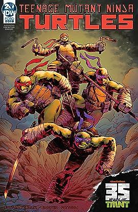 Teenage Mutant Ninja Turtles: Casualty of War