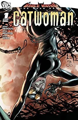 Bruce Wayne: The Road Home: Catwoman (2010) #1