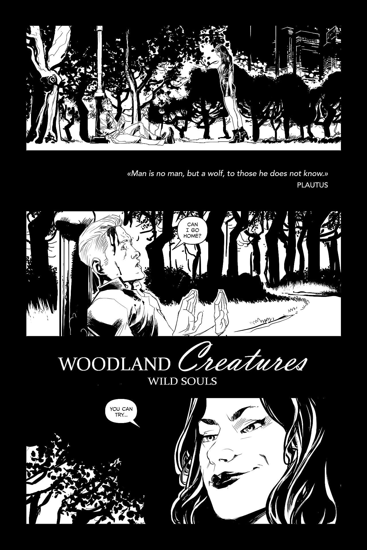 Woodland Creatures. Wild Souls Vol. 1