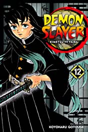 Demon Slayer: Kimetsu no Yaiba Vol. 12: The Upper Ranks Gather