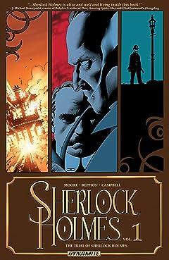 Sherlock Holmes Vol. 1: The Trial of Sherlock Holmes