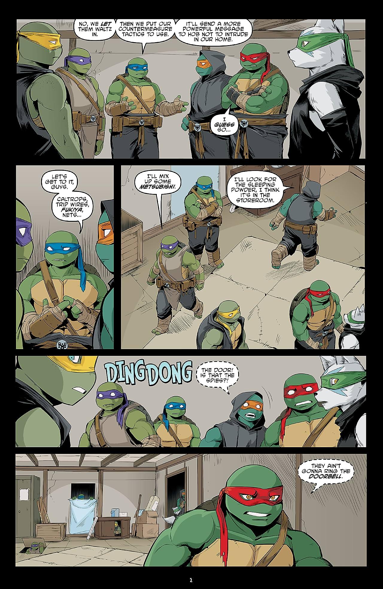 Teenage Mutant Ninja Turtles #111