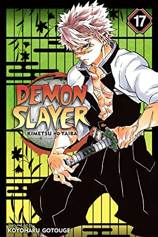 Demon Slayer: Kimetsu no Yaiba Vol. 17: Successors