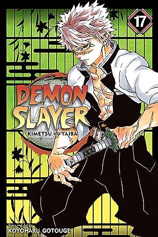 Demon Slayer: Kimetsu no Yaiba Tome 17: Successors