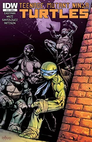 Teenage Mutant Ninja Turtles #33