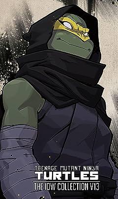 Teenage Mutant Ninja Turtles: The IDW Collection Vol. 13