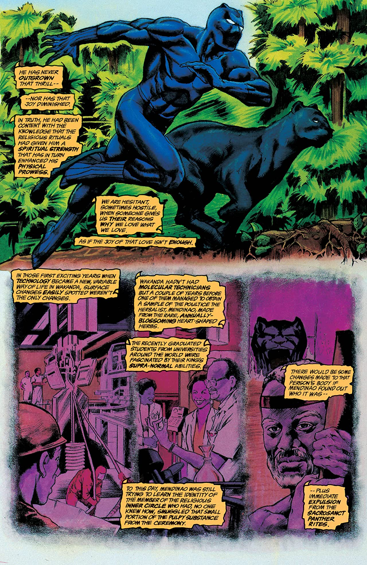 Black Panther: Panther's Prey (1991) #3 (of 4)