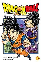 Dragon Ball Super Vol. 12: Meru's True Identity