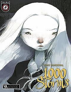 1000 Storms No.2