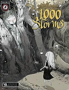 1000 Storms No.3