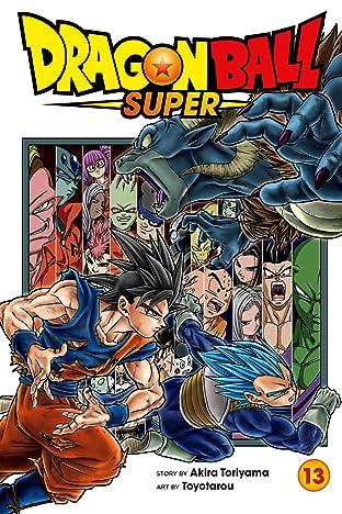 Dragon Ball Super Vol. 13: Battles Abound
