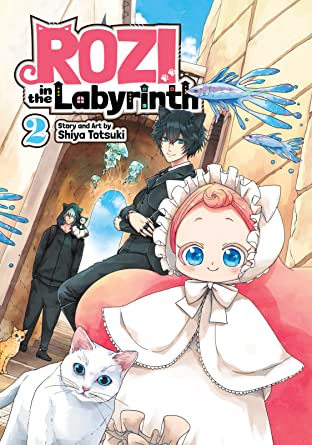 Rozi in the Labyrinth Tome 2