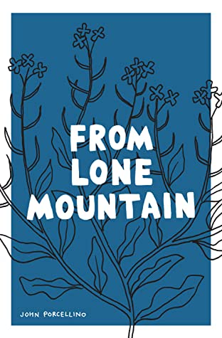 From Lone Mountain