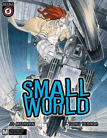 Small World #4
