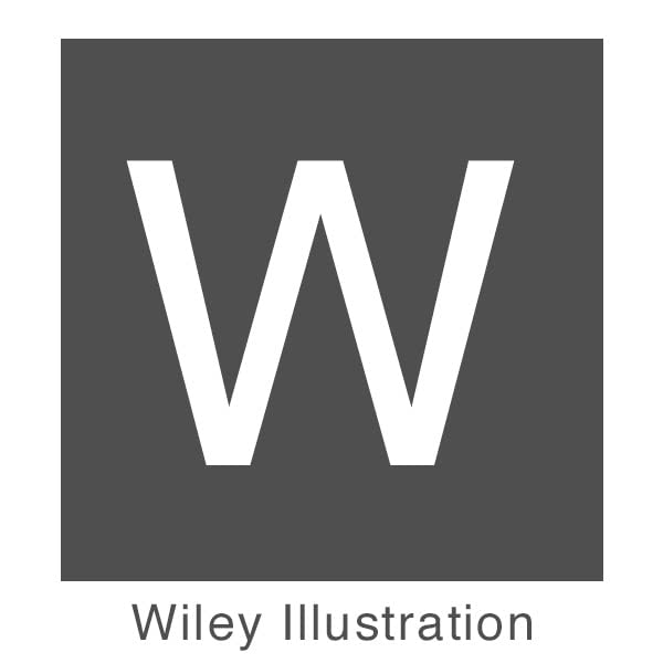 Wiley Illustration