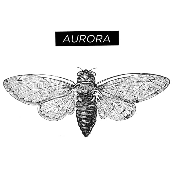 Aurora Comics
