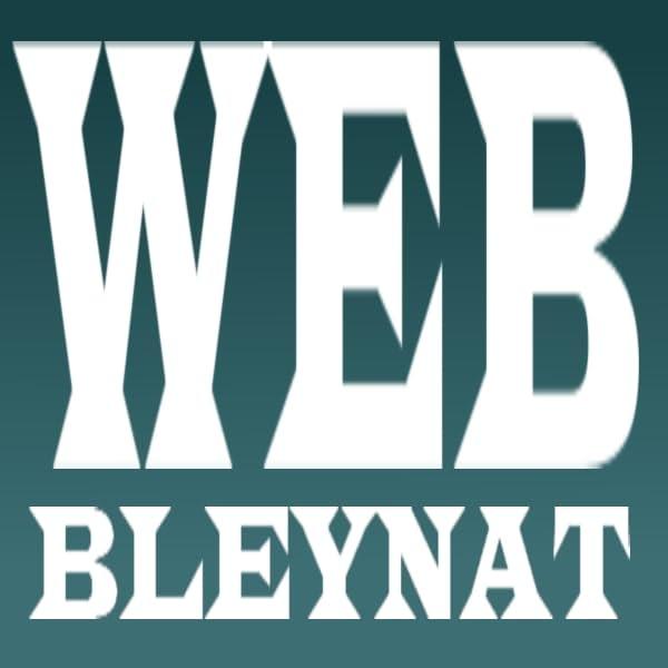 Web Bleynat