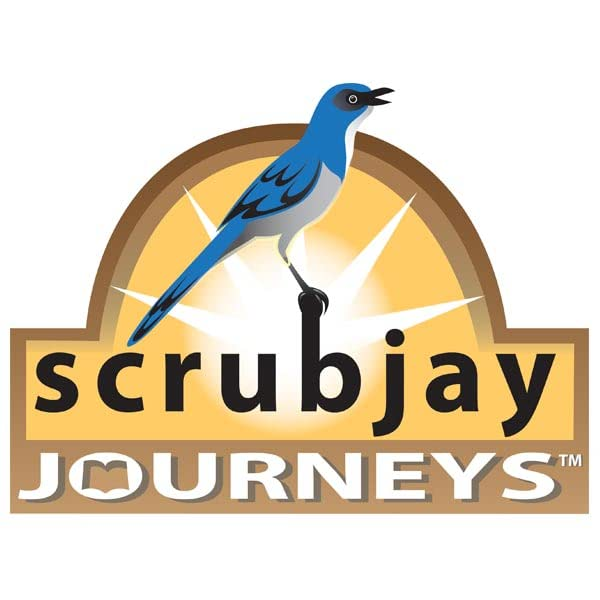 Scrubjay Journeys