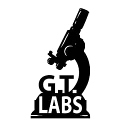 GT Labs