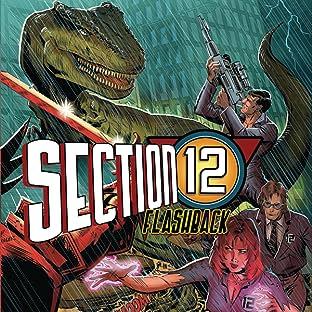 Section 12 (Flashback)