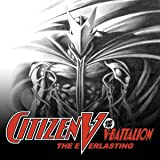 Citizen V and the V-Battalion: the Everlasting (2002)