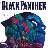Black Panther: Das erste Jahr