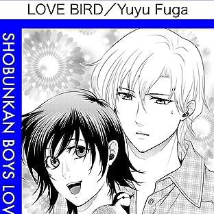 Love Bird (Yaoi Manga)