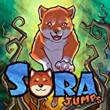 Sora Jumps: Beginnings