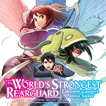 The World's Strongest Rearguard: Labyrinth Country's Novice Seeker