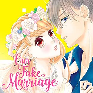 Our Fake Marriage