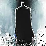 Batman: Sombre Reflet