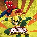 Marvel Universe Ultimate Spider-Man: Web Warriors (2014-)
