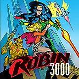 Robin 3000 (1992)