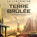 Le Labyrinthe - La Terre Brûlée
