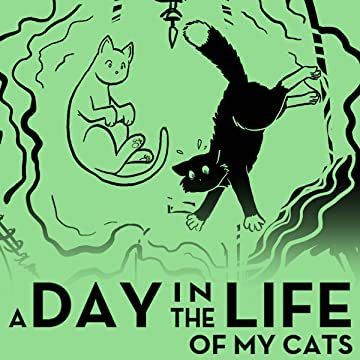 A Day in the Life Of My Cats