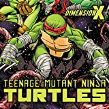 Teenage Mutant Ninja Turtles: Dimension X
