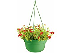 Hanging Basket, 12-Inch, Living Green