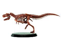 Jr Scientist T-Rex Skeleton