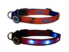 University of Florida LED Collar - Med