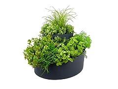 Spiral Herb Garden Planter