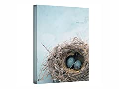 Blue Nest - Wrapped Canvas (3 Sizes)