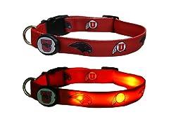 University of Utah LED Collar - Medium